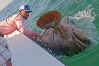 wilson-chandler-fish